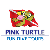 Pink Turtle Fun Dive Tours
